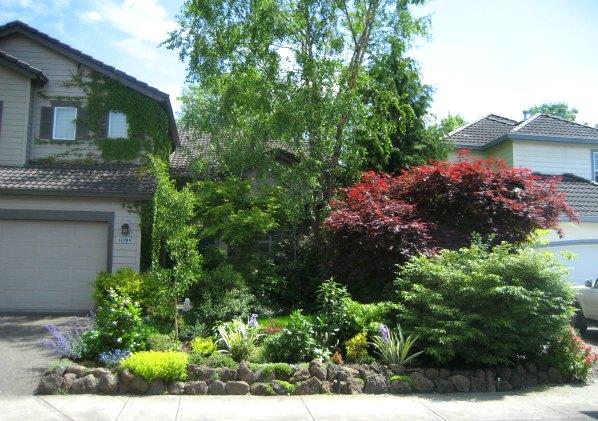Michael Residence Landscape Design