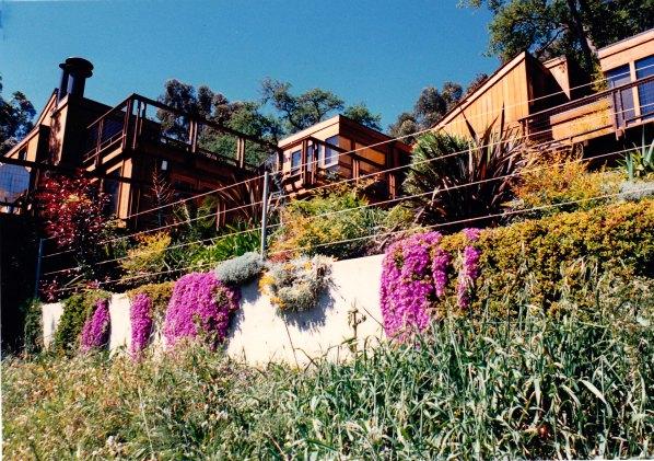 Ryley Residence Landscape Design