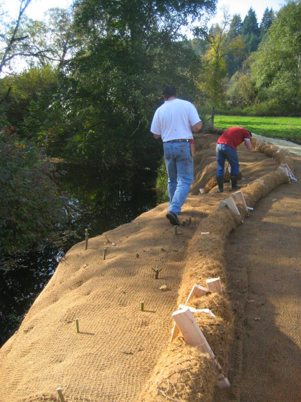 McKay Creek Bank Restoration Project