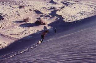 sand dune run