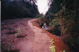 THPRD nature park bankwork