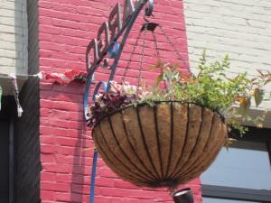 Hanging baskets @ Cargo Portland, Oregon