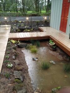 shank rain garden